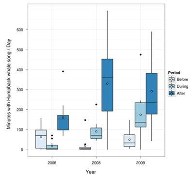 Risch 2012 dataWEB